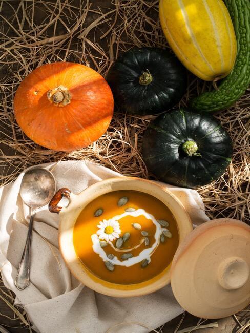 Zupa dyniowa w białej miseczce