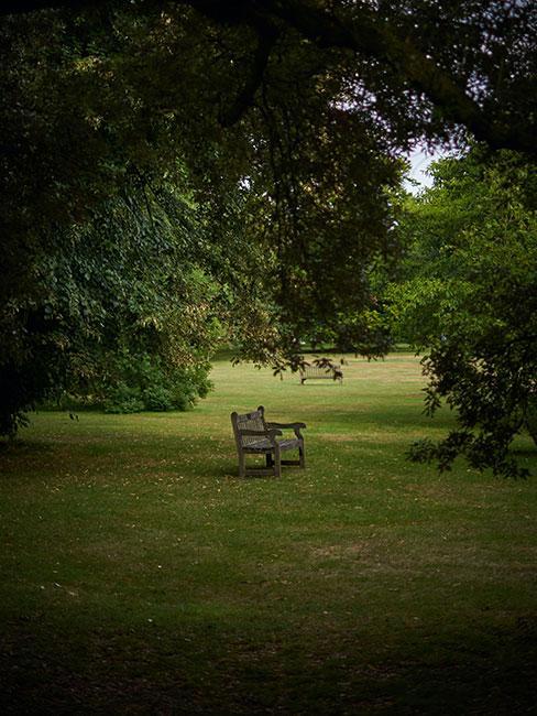 Angielski park z drewnianą ławką