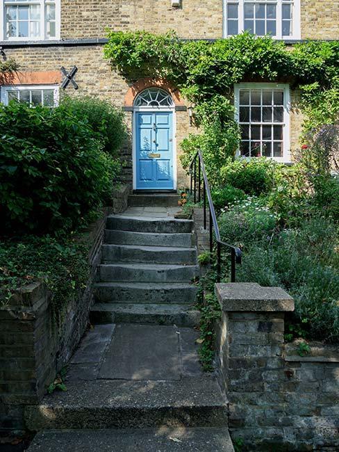 Tradycyjny angielski dom w kamienicy zarośnięty zielenią