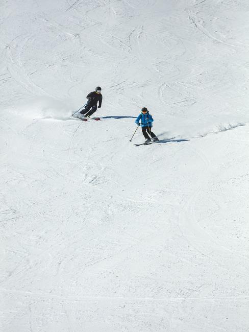 Stok narciarski z dwójką narciarzy