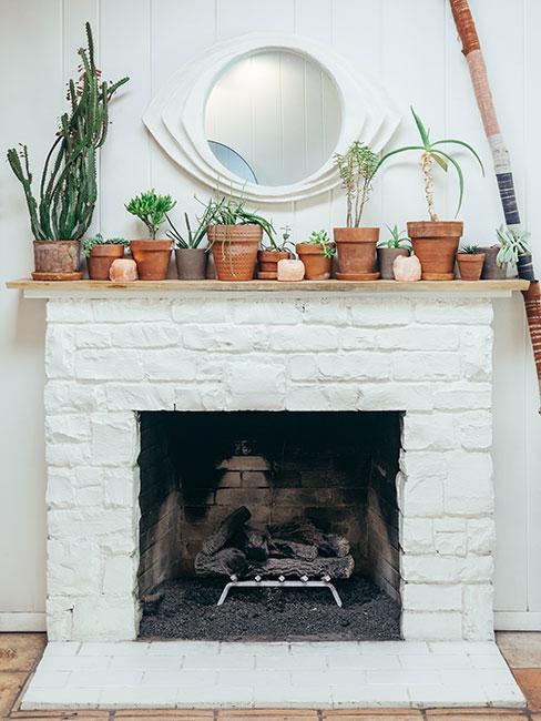 Biały kominek z cegły z żywymi roślinami w doniczkach