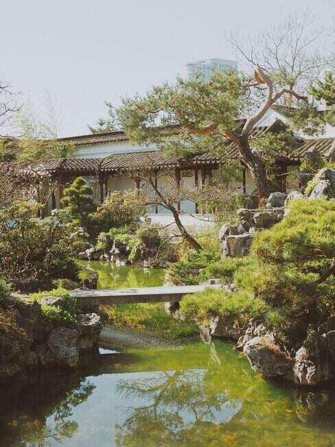 Ogród japoński z wodą i mostem