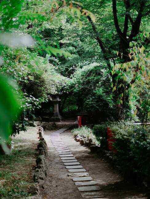 Ogród japoński idealny do spacerów, dużo zieleni i dróżka z kamykami