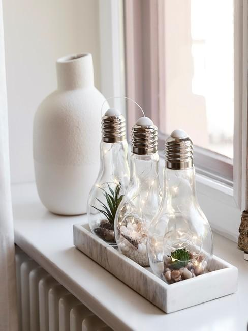 Butelki z roślinami stojące na parapecie