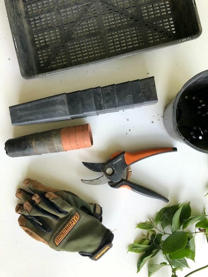 Rękawice i narzędzia, gadżety ogrodnicze