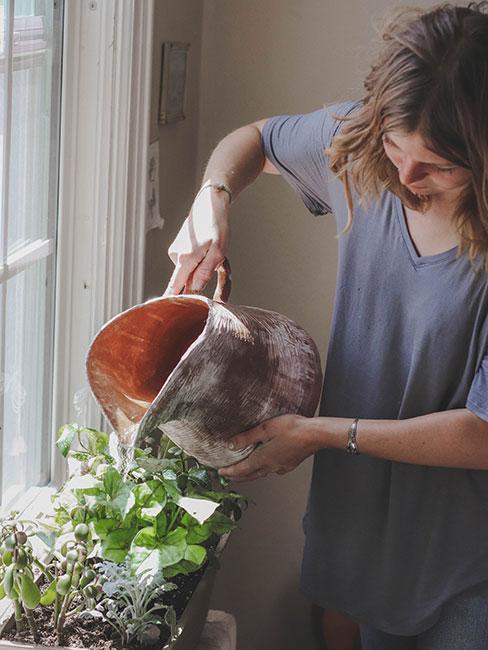 Kobieta podlewająca zioła na parapecie