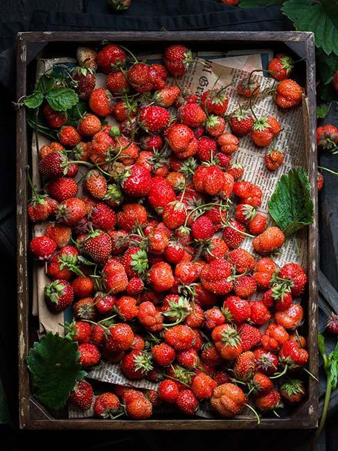 truskawki z ogrodu na tacy