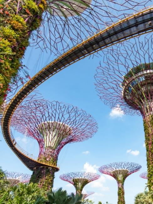 Ogród botaniczny Gardens by the Bay, Singapur