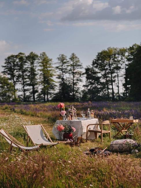 garden party na łące wśród żelaków