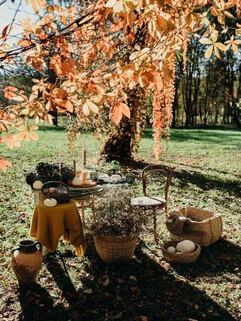 dekoracje ogrodowe w jesiennym ogrodzie