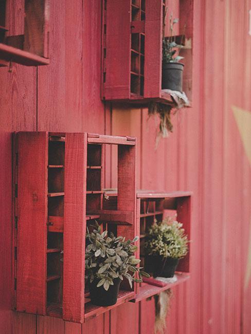 Rośliny na czerwonej drewnainej ścianie w czerwonych skrzynkach
