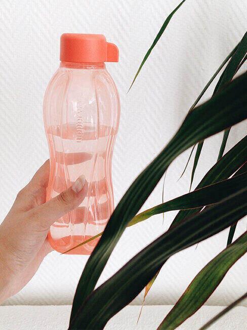 Eko butelka na wodę do wielokrotnego użytku