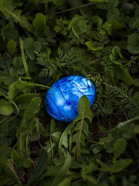 niebieskie jajeczko marmurkowe