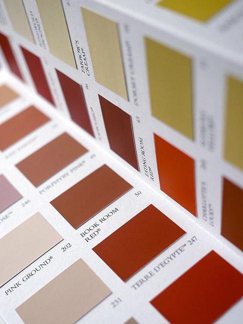Ciepłe próbki kolorów