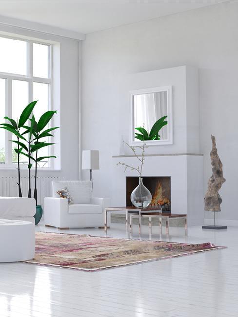 Duży salon w bieli z kominkiem i dużą rośliną doniczkową