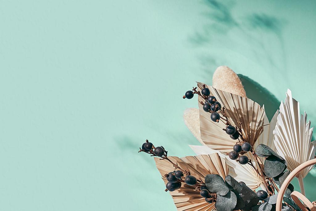 Seledynowe tło zoom z suszonymi kwiatami