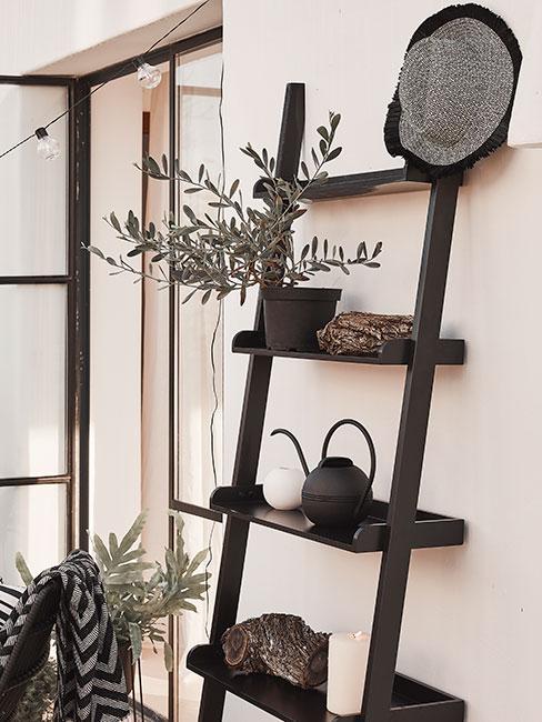 Zbliżenie na regał drabinkowy na tarasie z czarną konewką i roślinami