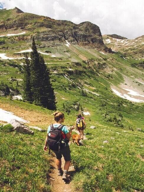 Turyści na górskim szlaku