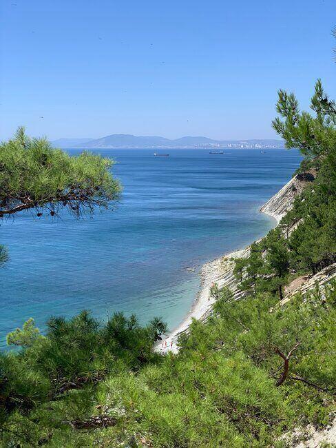 Zatoka otoczona plażami i drzewami