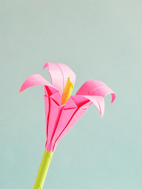 różowy kwiat origami z apieru