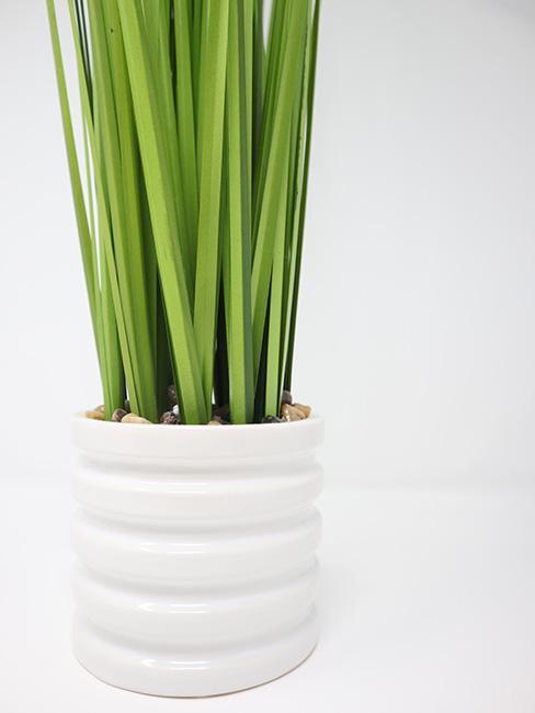 Sztuczna trawa w białej doniczce