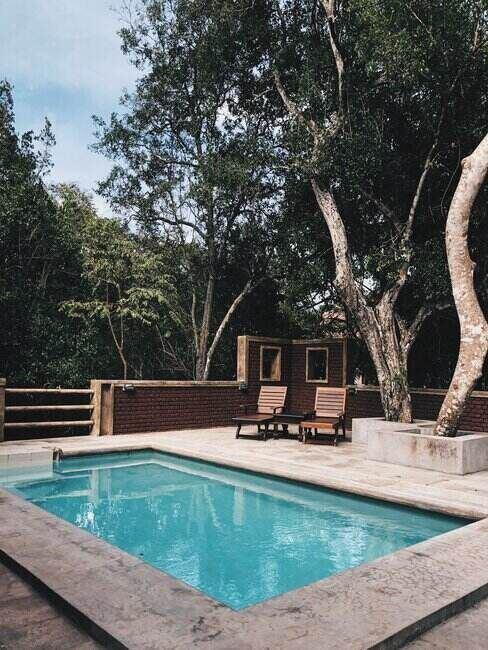Basen w ogrodzie otoczony drzewami i murem