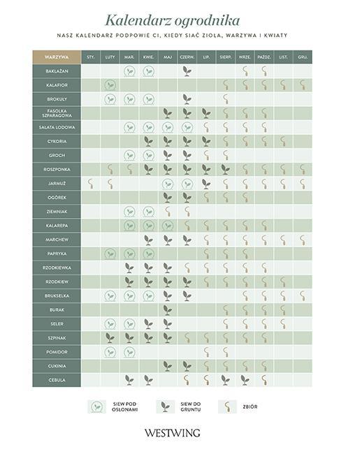 kalendarz siewu warzyw