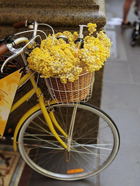 żółta kocanka w koszyku żółtego roweru