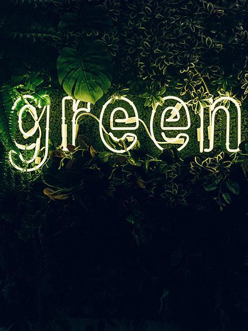 Neonowa lampa na zielonej ścianie z napisem green