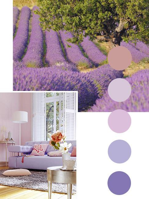 Moodboard z sofą i polem lawendy w odcieniach fioletu