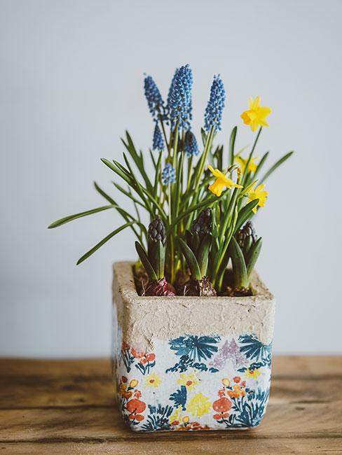 stroik wiosenny z żonkilami i szafirkami