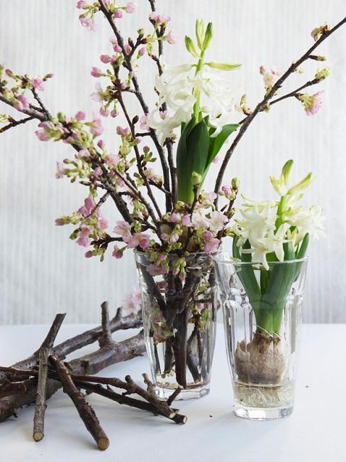 Gałązki kwitnącej jabłoni obok białych hiacyntów