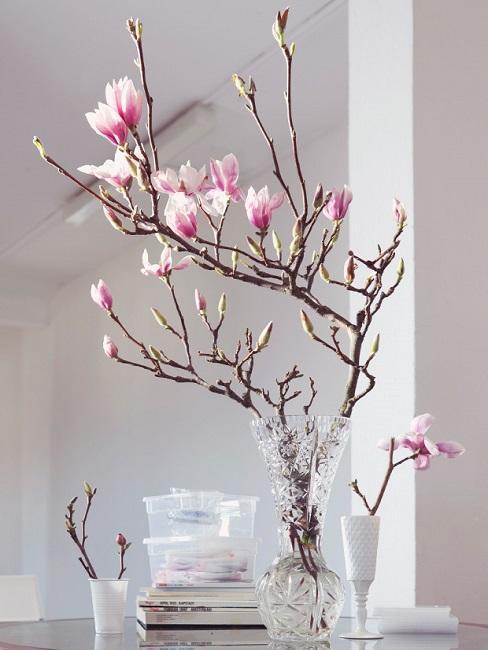 Gałązki magnolii w szklanym wazonie na stole