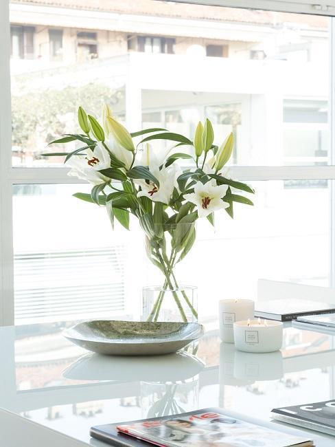 białe kwiaty w wazonie na oknie