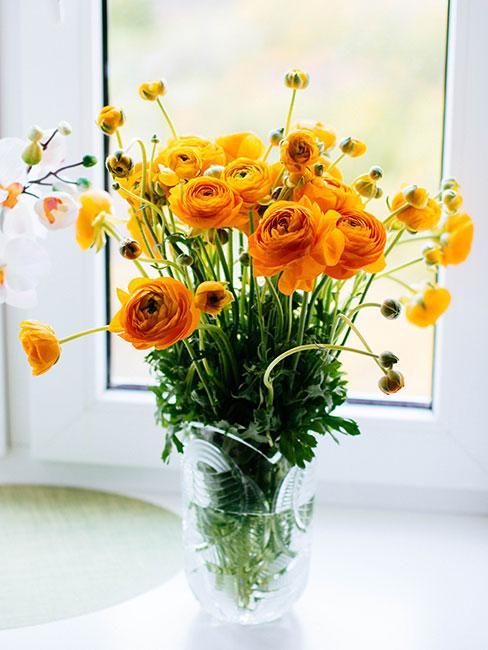 żółte jaskry w szklanym wazonie