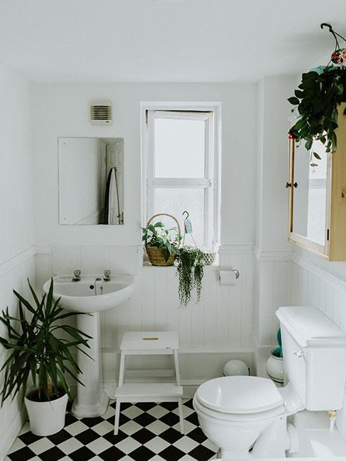 mała łazienka z roślinami