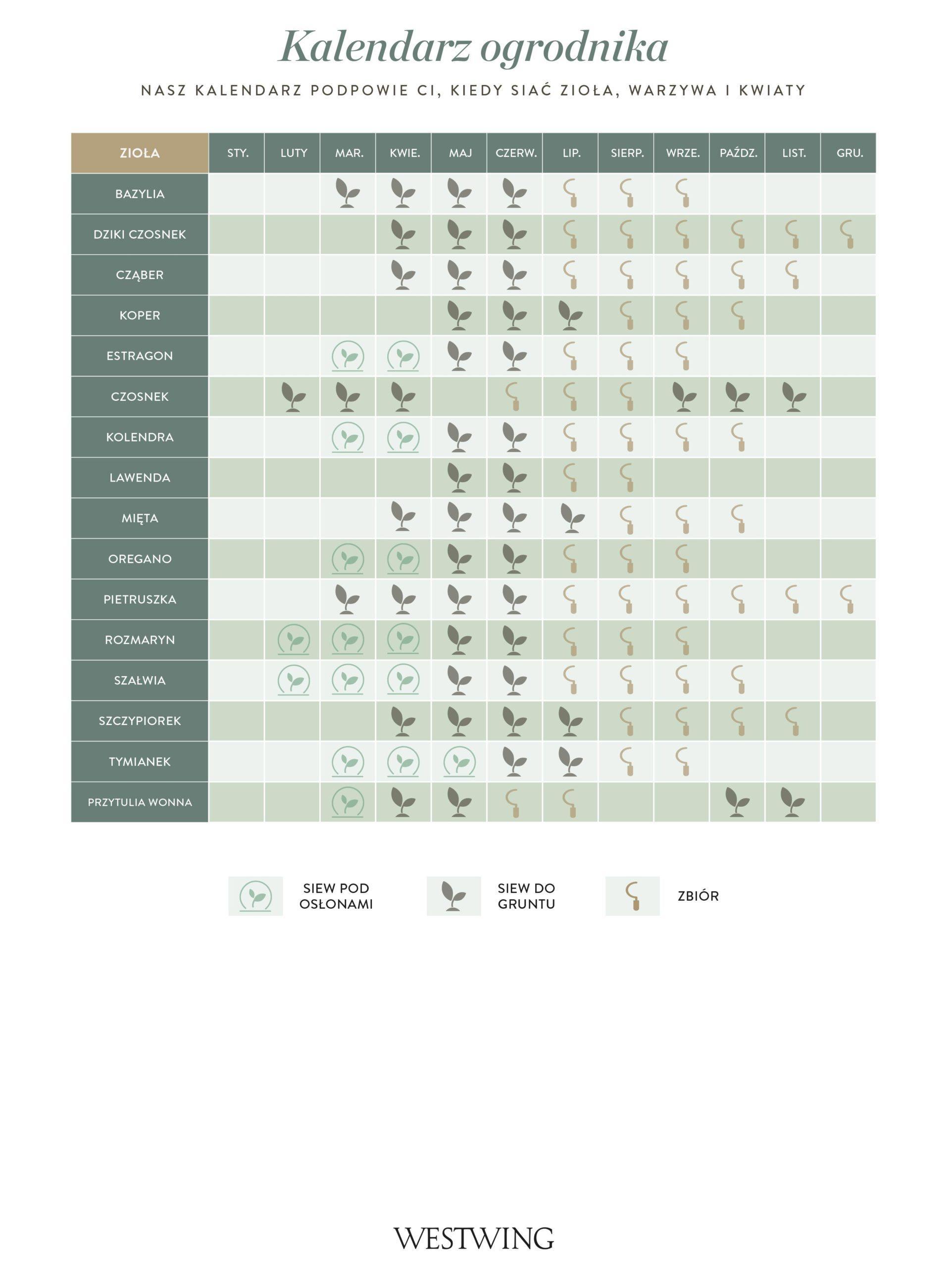 kalendarz siewu ziół do wydrukowania
