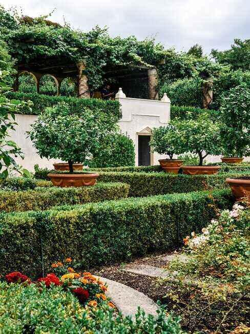 Ogród pełen krzewów, drzew i alejek