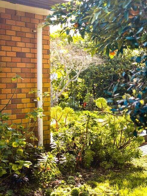 Ogród koło domu, porośnięty trawnikiem, z kilkoma roślinami