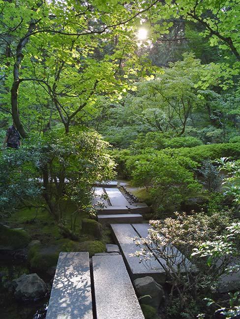 japoński ogród z drewnianą ścieżką