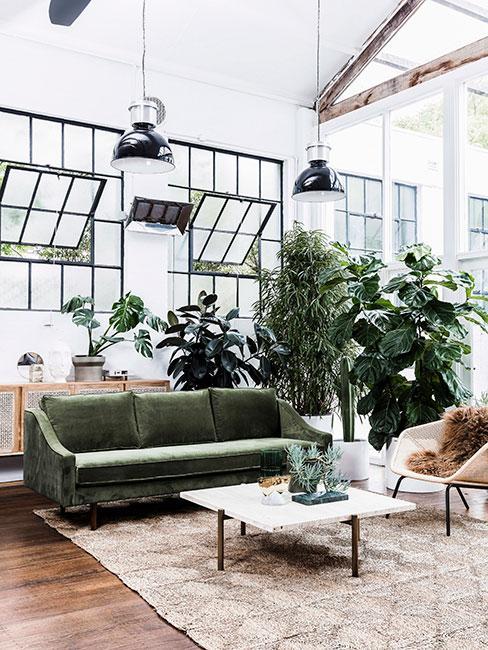 rośliny w przestronnym lofci z zieloną sofą z aksamitu