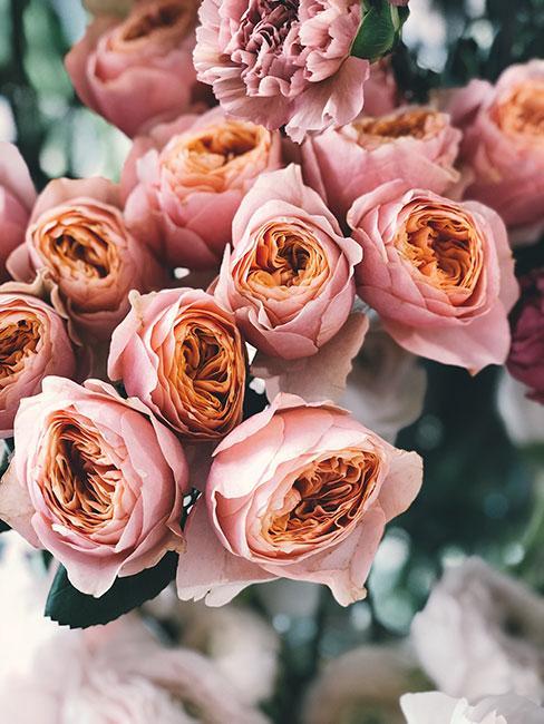 róże na dzień mamy