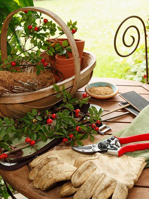 akcesoria ogrodnicze na stole w ogrodzie przed domem