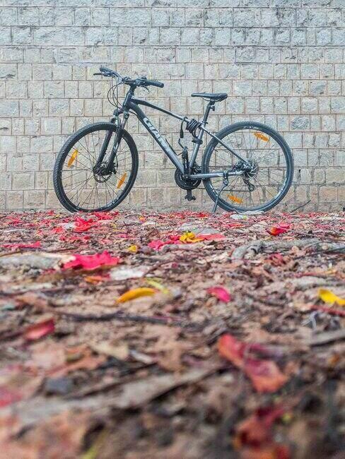 Rower stojący na ziemi przysypanej jesiennymi liśćmi