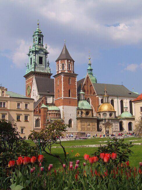 Widok na Wawel z oddali