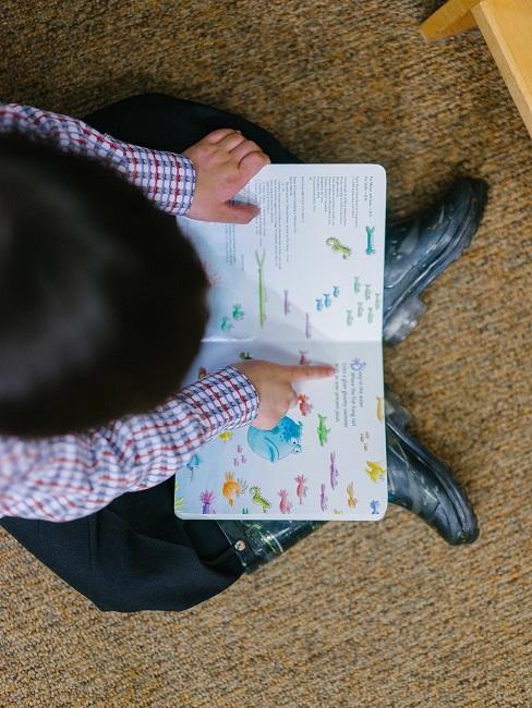 Dziecko przeglądające obrazki w bajce