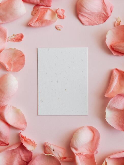 Biała kartka na życzenia na ślub na różowym tle z płatkami kwiatów