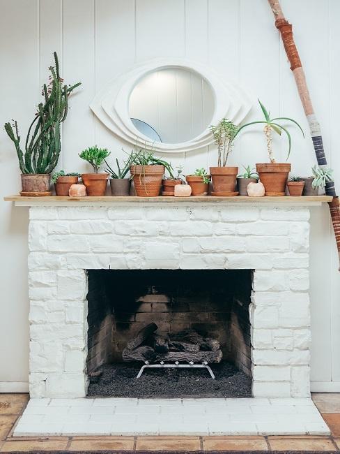 Kominek z roślinami oraz lustrem na ścianie