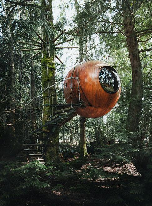 okrągły domek na drzewie w lesie