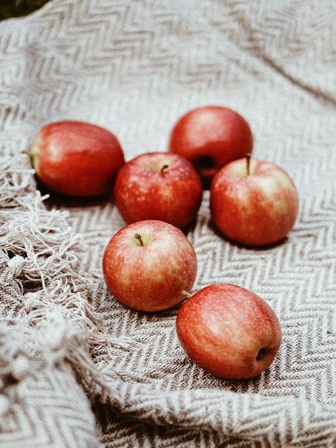 Jabłka leżące na kocu